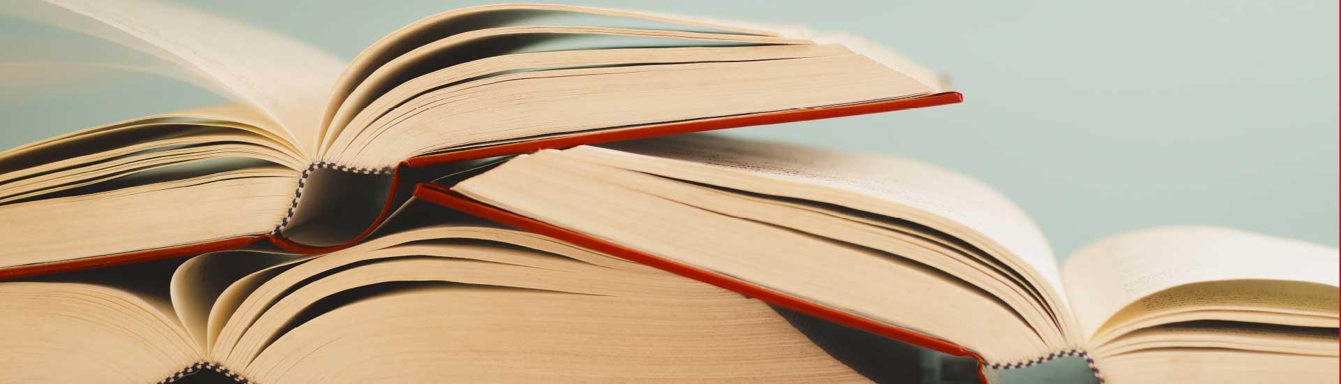 Pareto Bücher